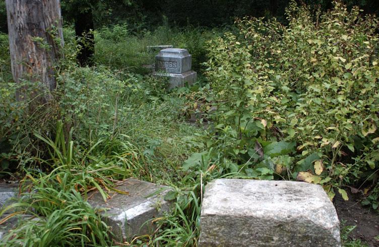 Bachelors Grove Cemetery, Illinois