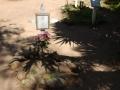 El Campo Santo Cemetery, California