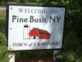 Pinebush UFOs, New York State