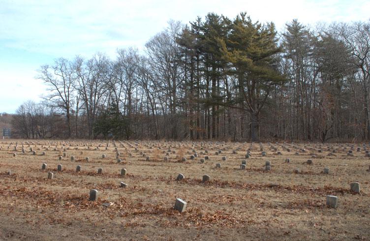 Potters Field Cemetery, Yaphank, New York