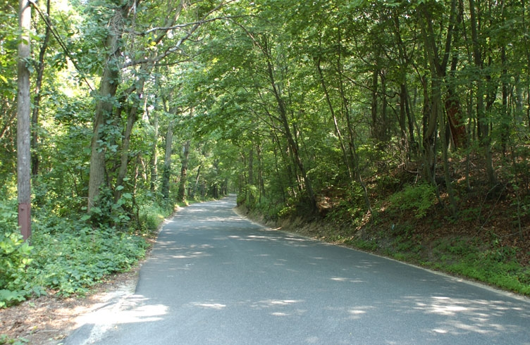 Haunted Sweet Hollow Rd, New York State