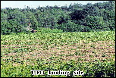 This field is the approximate landing site of the unidentified flying object in 1980